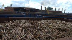 As vendas de etanol também registraram aumento, de acordo com a União da Indústria de Cana-de-açúcar