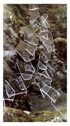 andy goldsworthy. One of my most favourite artists for more than 20 years.
