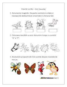 Fise de lucru - gradinita: Fisa de lucru Insecte - Domeniul Limba si Comunicare - Grupa Mare Preschool Family Theme, Preschool Activities, Educational Activities For Kids, Infant Activities, Pre K Math Worksheets, Spring Crafts For Kids, Math For Kids, Box Art, Coloring Books