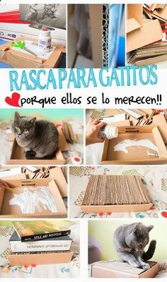 Cats Toys Ideas - Mascotas,pets,DIY,para,for,gatos,cats,perros,dogs,pajaros,birds,handcrafts,manualidades,chaiselongue,sillon,sofa,wheelchair,silla,ruedas,ropa,clothes,toys,juguetes,ball,pelota,home,casita,rascador, - Ideal toys for small cats