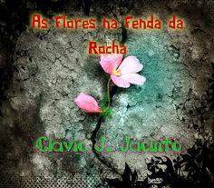 Pr C. J. Jacinto: Flores na Fenda da Rocha