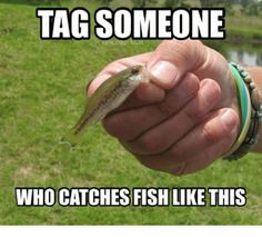 ➔ Skiff Life says: Lol! Credit to ?Top Selling Gear Popular LinksTop Fishing Tide AppsGifts for MenFishing Hats Happy Fishing, Fishing Life, Going Fishing, Ice Fishing, Fishing Boats, Fishing Quotes, Fishing Humor, Fishing Store, Country Quotes