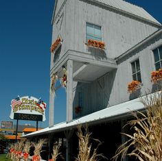 Dixie Stampede is located in Pigeon Forge and is a wonderful dinner and show!