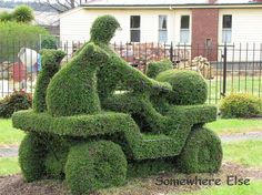 22 Apr 2020 Landscape Garden or your own home garden, you can make your own topiary garden a garden shaped into the appearance of animal figure.Read for topiary garden ideas. Topiary Garden, Terrace Garden, Lawn And Garden, Amazing Gardens, Beautiful Gardens, Amazing Grass, Grass Flower, Plant Icon, Trees And Shrubs