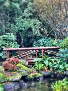 I found a Poohsticks bridge! Local Parks, Garden Bridge, Bridges, Wander, Outdoor Structures, Explore, Exploring