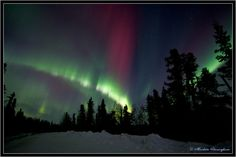 Northern Lights - Fairbanks, Alaska