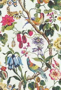 ideas for bird wallpaper bedroom inspiration