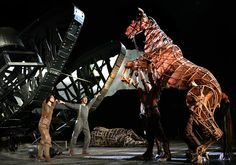Amazing puppetry from the stageshow version of Warhorse.