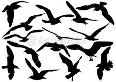 Seagull In Flight The S Stock Illustrations Clipart - Free Clip ...
