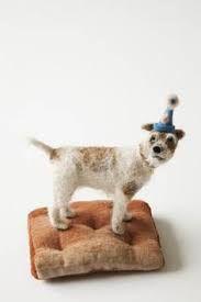 Afbeeldingsresultaat voor domenica more gordon dogs for sale