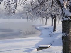 Foggy morning in the snow at Argyle Lake, Babylon, NY. J Gangloff-Kaufmann Long Island Sound, Foggy Morning, Winter Scenes, Winter Time, Chill, Snow, Seasons, Places, Sweet