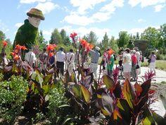 Bienvenue dans le nouveau Parcours du géant! - Parc Marie-Victorin Kingsey Falls (Mosaiculture)