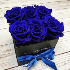 Royal Blue   #theroyalrosesgermany #rosebox #infinity #royal #blueroses Beautiful Rose Flowers, Love Rose, Amazing Flowers, Luxury Flowers, Exotic Flowers, Blue Flowers, Blue Rose Bouquet, Bouquet Box, Blue Roses Wallpaper