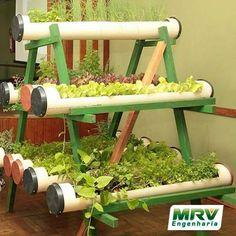 Dica sustentável: Crie uma horta utilizando canos de pvc.