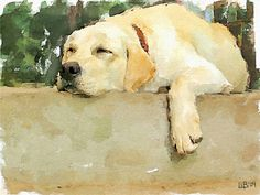 """Siesta"" by Vitaly Shchukin, Penza // Digital watercolor from photo // Imagekind.com --"