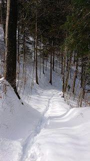 Aruese Schlucht/ Gorges de l'areuse Snow, Outdoor, Switzerland, Adventure, Hiking, Viajes, Outdoors, Outdoor Living, Garden