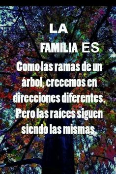La familia Family Quotes, Me Quotes, People Quotes, Love My Family, My Love, Bien Dit, Quotes En Espanol, Frases Humor, Spanish Quotes