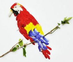 Parrot made from butterfly peas and gerberas