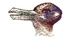 Optical Illusion Pictures and Illusion Art with hidden objects- Is it a duck or a rabbit?