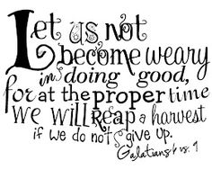 """""""Let us not become weary in doing good, for at the proper time we will reap a harvest if we do not give up."""" Galatians 6:1 #scripture"""