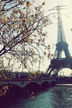I have cousins in Paris. I really should visit sometime. 'Midnight in Paris' made that very clear to me!