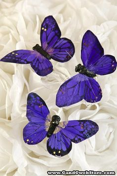 3'' BUTTERFLY PURPLE PKG/12