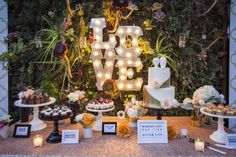 LOVE marquee lights and moss/succulents backdrop / Dessert table