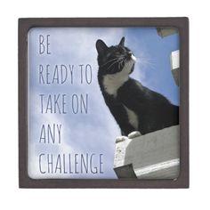 Be Ready To Take On Any Challenge motivational cat Premium Keepsake Box