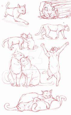 Animal Sketches, Animal Drawings, Art Sketches, Art Drawings, Drawing Animals, Cat Drawing Tutorial, Drawing Tutorials, Cat Reference, Drawing Reference Poses