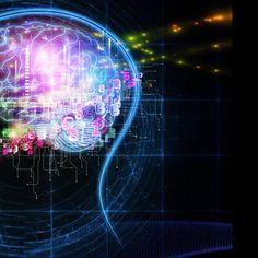 ¿Qué tipo de inteligencia predomina en ti?