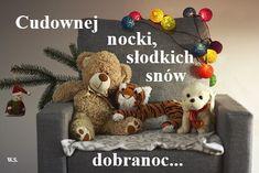 Aga, Teddy Bear, Animals, Animales, Animaux, Teddy Bears, Animal, Animais