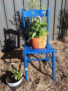 Carver chair flower pot