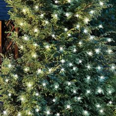100 White Solar LED String Lights Christmas Xmas Outdoor Garden Yard Decoration for sale online Landscape Lighting, Outdoor Lighting, Solar Led String Lights, Timber Ceiling, Porch Area, Direct Lighting, Pergola Designs, Simple Colors, Solar Power