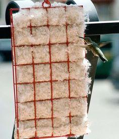 Hummingbird Nesting Material Kit
