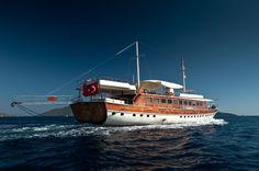 Halis Temel Gulet Charter, 12 cabins, 24 berths. Available in Croatia, Turkey, Greece etc.