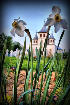 Church in #Romania