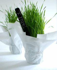 Frühlings-Gras für die Tischnummer verwenden
