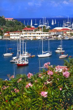The Vacation Spot - St. Barths