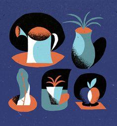 MONGE QUENTIN - Illustrations - plants