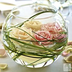 Google Image Result for http://www.blossomweddingflowers.co.nz/p7hg_img_5/fullsize/BVH005-large-fishbowl-vase_fs.jpg