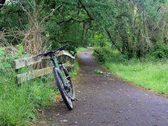 8 Best Bike Rides - Salem images | Bike rides, Bike trails
