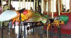 Cicada, Beetle, Bombardier Beetle, and Caterpillar On Bug Carousel