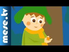 Gryllus Vilmos: Falevél (gyerekdal, mese, Félnóta sorozat)
