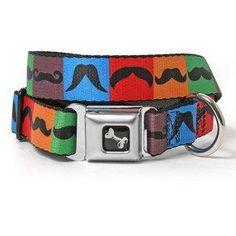 Mustache Dog Collar