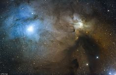 Another image by award-winning Phil Hart who entered this image called 'Rho Ophiuchi Region'