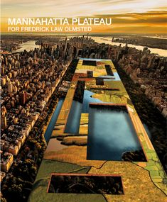 Architects Reimagine Central Park After a Fictional Eco-Terrorist Attack Central Park, New York Central, Usa Songs, City Grid, New York Landmarks, Cloud Infrastructure, Challenges And Opportunities, Green Street, Biomes