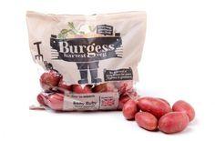 Patatas. Reino Unido: Produce World lanza una marca orientada al consumidor