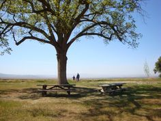 Wind Wolves Preserve by Kaye Powell on Capture Kern County // Peaceful Place