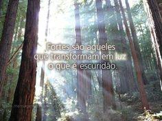 Fortes são aqueles que transformam em luz o que é escuridão.