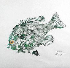 Penguin & Fish: Artist: Barry of fishfanatic